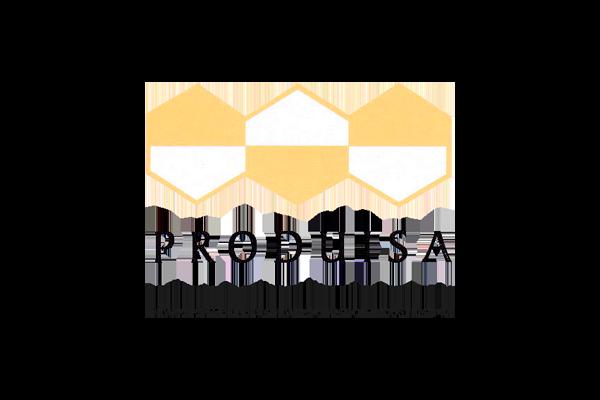 Logo de Produisa